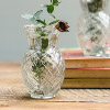 Little Glass Pineapple Vase