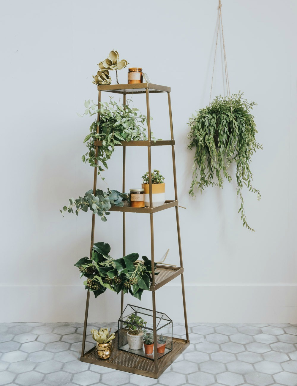 How To Style Plants In Your Home Rose And Grey