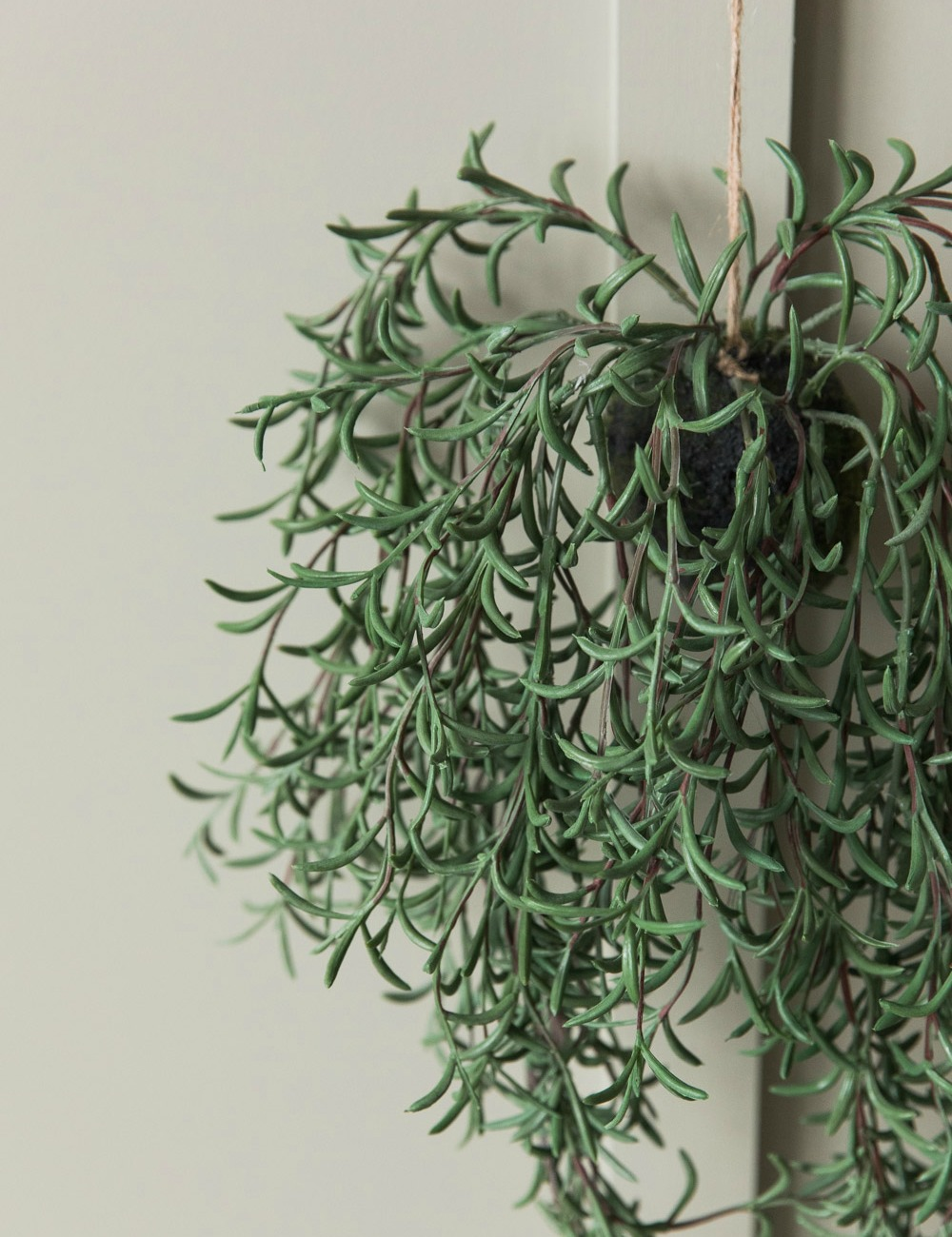 Faux Hanging Sprengeri Plant