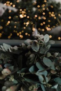 Rose & Grey | Christmas in their Altrincham Showroom