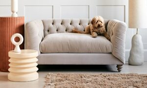 Sofa, Love Seat or Armchair? How to choose the perfect fit for your home | Rose & Grey