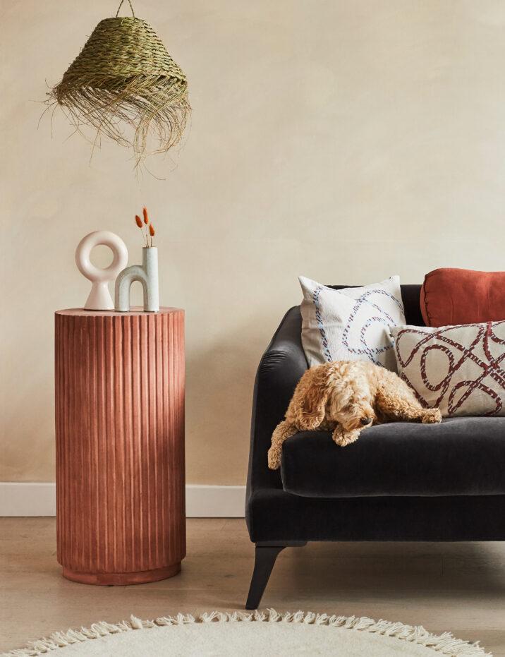 How to Choose a Pet Friendly Sofa | Rose & Grey