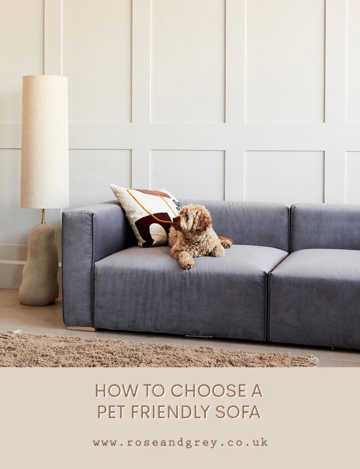 How to Choose a Pet Friendly Sofa
